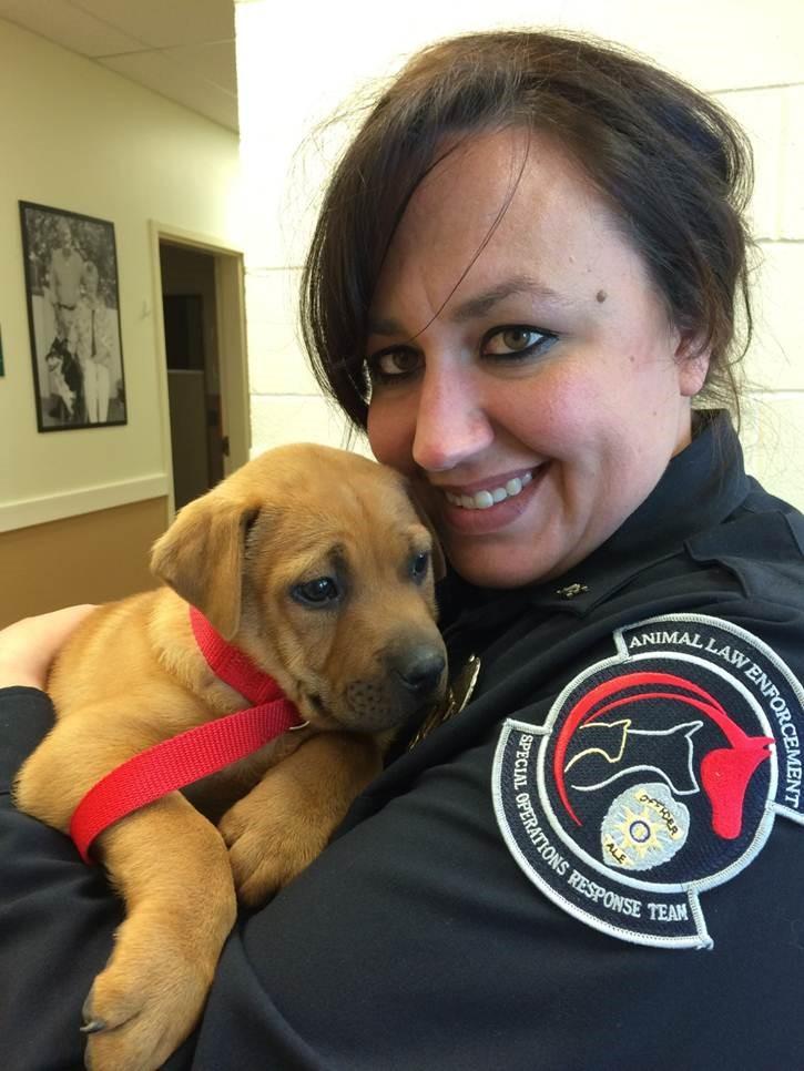 Lindsey Vigna - Humane Society of the Pikes Peak Region